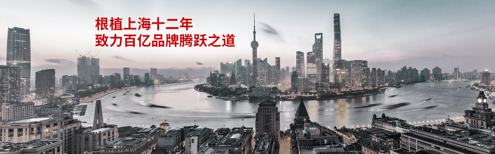致力共通 十二年根植上海